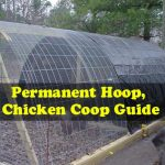 Permanent Hoop, Chicken Coop Guide
