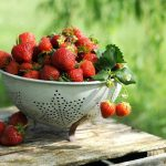 How To Grow 30 Strawberry Plants