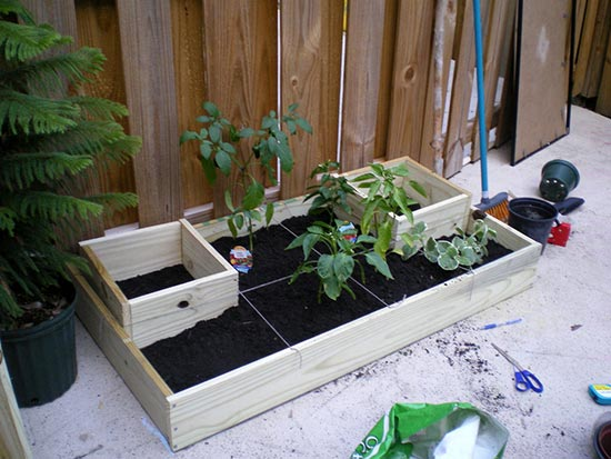Ultimate Urban Homestead Garden