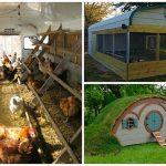 30+ Urban Chicken Coops Ideas