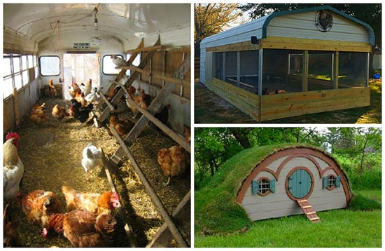 Urban Chicken Coops Ideas