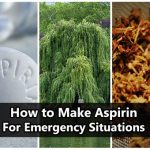 How to Make Aspirin if You're Lost in the Woods