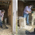 Clean A Chicken Coop Naturally
