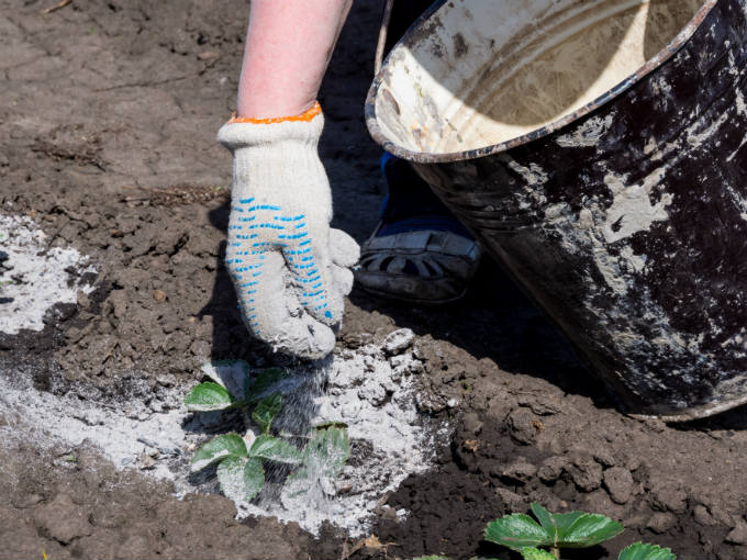 30 Surprising Uses for Wood Ash